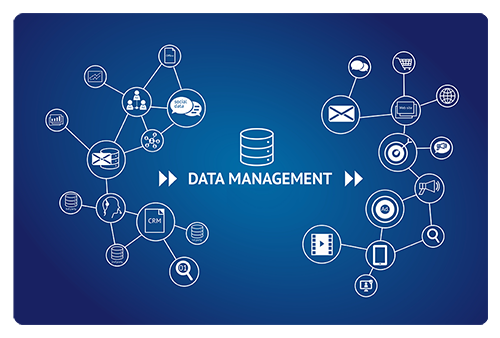 data management adams direct media services
